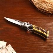 Нож перочинный Мастер К, с кнопкой, фиксатор рукоять с кольцом, 6.5ъ8.5 см